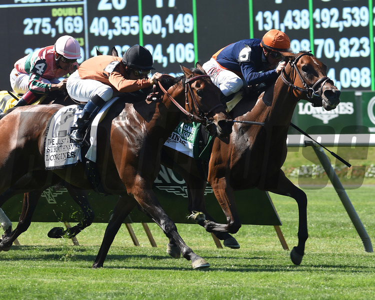 Coffee Clique wins the 2014 Longines Just a Game Stakes at Belmont Park.<br /> Coglianese Photos/David Alcosser