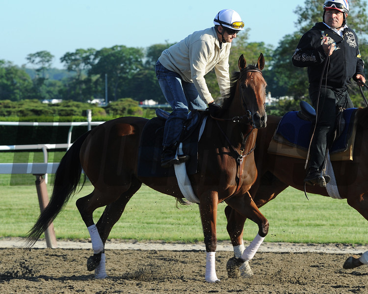 Beholder at Belmont Park 6/1/2014<br /> Coglianese Photos/Susie Raisher
