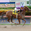 Heart Stealer wins the 2014 Paseana Stakes at Gulfstream Park.<br /> Coglianese Photos/Lauren King