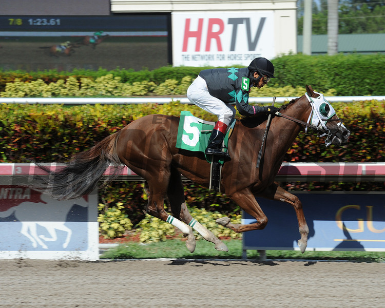Dreamlicious dreams up a victory in the 7th race at Gulfstream Park on Mother's Day. <br /> Coglianese Photo