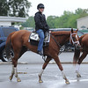 Princess of Sylmar<br /> Belmont Park, May 24, 2014<br /> Coglianese Photos/Susie Raisher