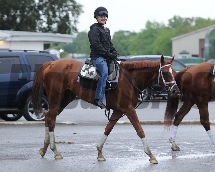 Princess of Sylmar<br /> Belmont Park, May 24, 2014<br /> Coglianese Photos/Susie Raisher