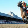 So Lonesome wins the Albany Stakes 8/24/2014.<br /> Coglianese Photos/Adam Mooshian