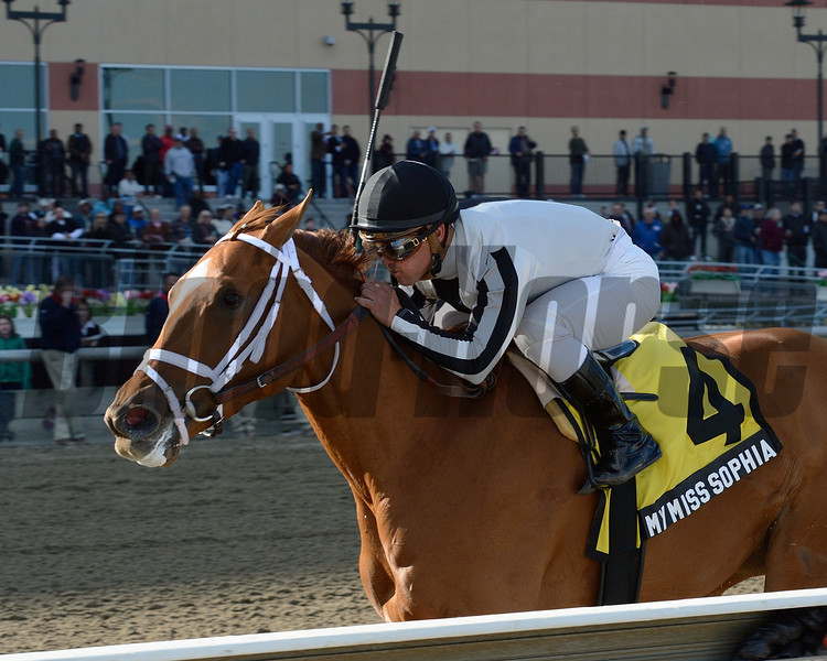 My Miss Sophia wins the 2014 Gazelle at Aqueduct.<br /> Coglianese Photos/Chelsea Durand