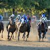 Tonalist wins the 2014 Jockey Club Gold Cup at Belmont Park.<br /> Coglianese Photos/Joe Labozzetta