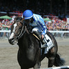 Upstart wins the Funny Cide Stakes at Saratoga 8/24/2014.<br /> Coglianese Photos