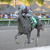Spot wins the 2014 Swale Stakes at Gulfstream Park.<br /> Coglianese Photos/Kenny Martin
