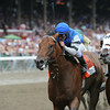 The Big Beast wins the 2014 King's Bishop at Saratoga.<br /> Coglianese Photos/Adam Mooshian