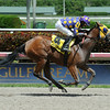 Leap Year Luck wins the 2014 Florida Stallion Desert Vixen Stakes at Gulfstream Park. <br /> Coglianese Photos/Leslie Martin