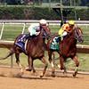 Galiana Abel Lezcano Sweet And Sassy Stakes Delaware Park Chad B. Harmon