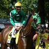 King Kreesa wins the West Point Stakes at Saratoga 8/24/2014.<br /> Coglianese Photos