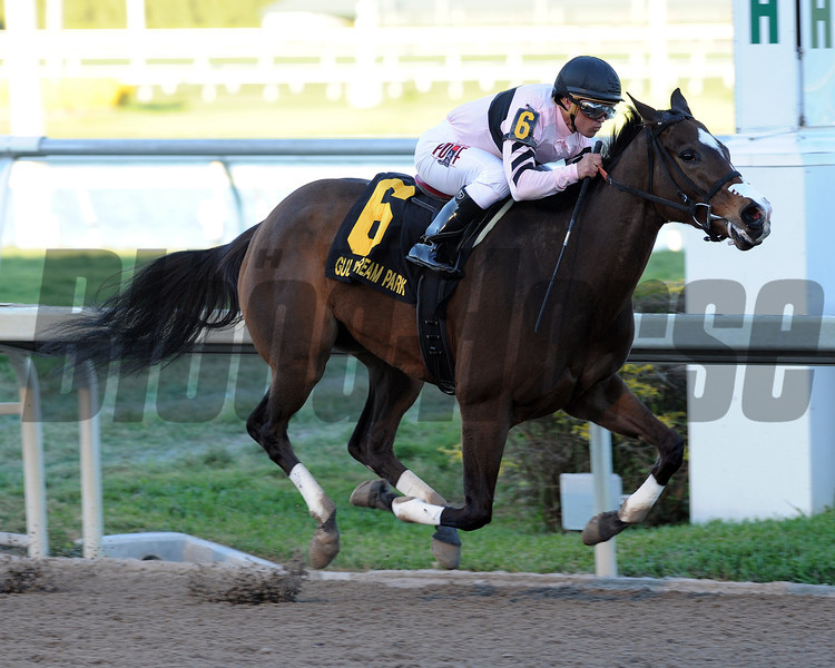 Devil's Cave wins the Sabin Stakes in track record time at Gulfstream Park.<br /> Coglianese Photos/Lauren King