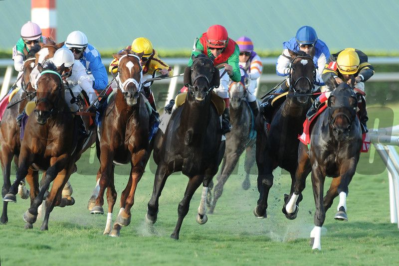 Summer Front wins the 2014 Ft. Lauderdale Stakes.<br /> Coglianese Photos/Shannon Spies
