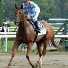 Free as a Bird wins the 2014 Smirnoff Sorbet Caress Stakes at Saratoga.<br /> Coglianese Photos