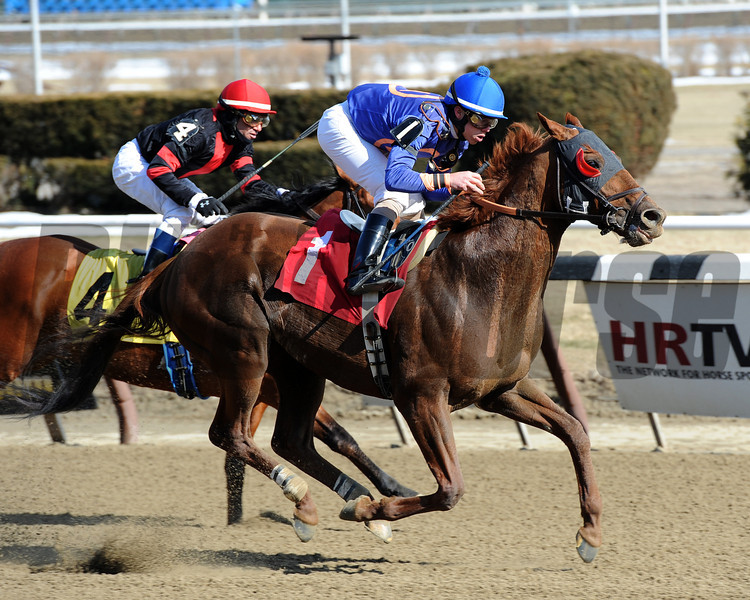 Strapping Groom wins the 2014 Tom Fool at Aqueduct.<br /> Coglianese Photos