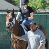Palace Malice at Belmont Park 6/1/2014<br /> Coglianese Photos/Susie Raisher