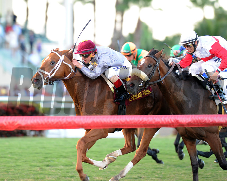 Sandiva wins the 2014 Tropical Park Oaks at Gulfstream Park.<br /> Coglianese Photos/Kenny Martin