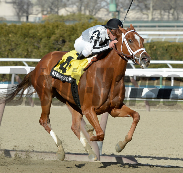 My Miss Sophia ridden by Javier Castellano wins the 119th running of The Gazelle at Aqueduct Race Track April 6, 2014.  Photo by Skip Dickstein