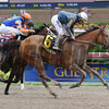 Gamay Noir wins the 2014 Rampart at Gulfstream Park.<br /> Coglianese Photos/Leslie Martin