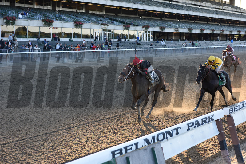 Paulssilverlining wins the Matron Stakes. 10/5/2014 <br /> Coglianese Photos
