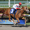 Thank You Marylou wins the Any Limit Stakes March 9, 2014<br /> Coglianese Photos/Lauren King