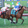 Gala Award wins the 2014 Palm Beach at Gulfstream Park.<br /> Coglianese Photos/Lauren King