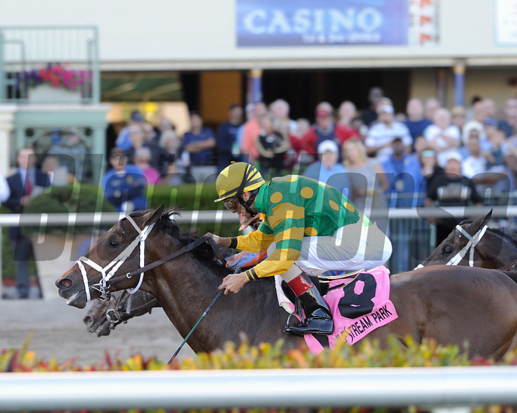 Palace Malice wins the 2014 Gulfstream Park Handicap.<br /> Coglianese Photos/Lauren King
