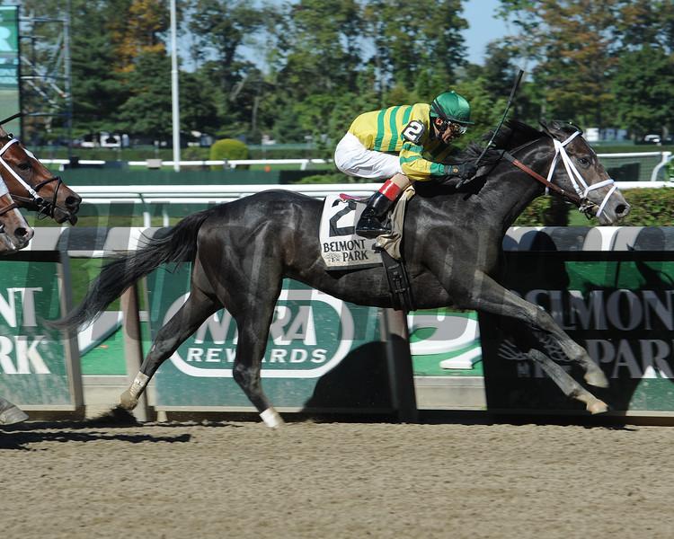 Blofeld wins the Futurity Stakes at Belmont Park 10/5/2014.<br /> Coglianese Photos