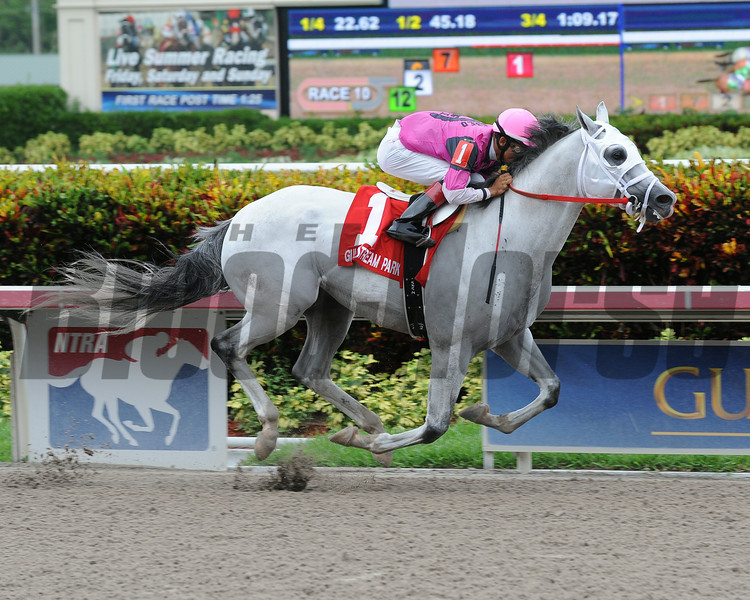 Mr. Baker wins the 2014 Housebuster Stakes at Gulfstream Park.<br /> Coglianese Photos/Leslie Martin