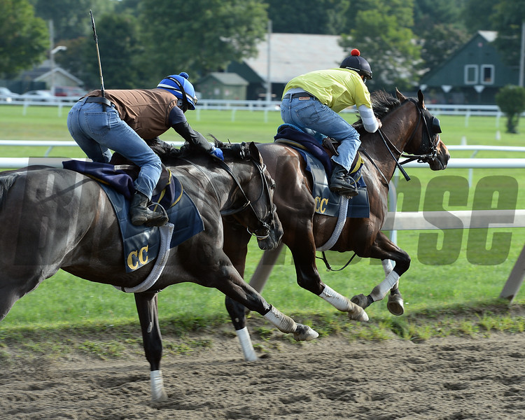 Tonalist (front) and Life in Shambles - Saratoga, August 16, 2014.<br /> Coglianese Photos/Susie Raisher