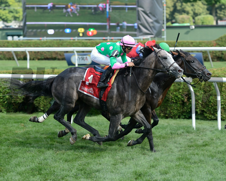 Pure Sensation wins the 2014 Quick Call Stakes. <br /> Coglianese Photos