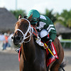Coco's Wildcat wins the 2014 Cassidy Stakes at Gulfstream Park. <br /> Coglianese Photos/Kenny Martin
