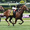 Undrafted wins the 2014 Jaipur.<br /> Coglianese Photos