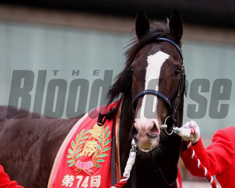Isla Bonita launched a powerful late rally and won the $2 million Satsuki Sho (Jpn-I, Japanese Two Thousand Guineas)  at Nakayama Racecourse. <br /> Photo by: Masakazu Takahashi