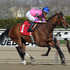 La Verdad wins the 2014 Distaff Handicap at Aqueduct.<br /> Coglianese Photos