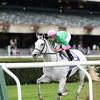 Discreet Marq wins the 2014 Ticonderoga Stakes at Belmont Park.<br /> Coglianese Photos
