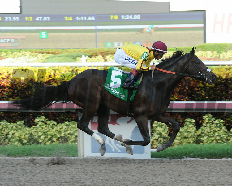 Atreides wins the Monarchos Stakes.<br /> Coglianese Photos/Leslie Martin