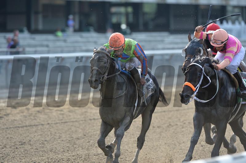 Golden Ticket wins the 2014 Left Bank Stakes at Belmont Stakes.<br /> Coglianese Photos/Joe Labozzetta