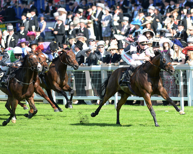 Field of Dream, Adam Kirby up, wins the Royal Hunt Cup, Royal Ascot, Ascot Race Course, England, 6/18/14 photo by Mathea Kelley