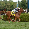 Main Sequence wins the Sword Dancer Stakes 8/17/2014.<br /> Coglianese Photos/Chelsea Durand