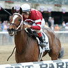 Untapable wins the 2014 Mother Goose at Belmont Park.<br /> Coglianese Photos/Adam Mooshian