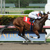 Dad'z Laugh wins the 2014 Big Drama Stakes at Gulfstream Park.<br /> Coglianese Photos/Leslie Martin