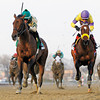 Samraat wins the Withers Stakes at Aqueduct