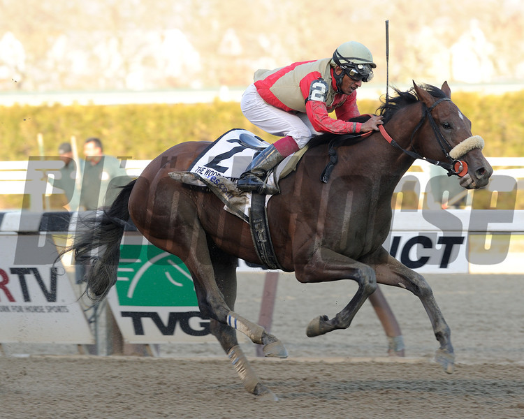 Wicked Strong wins the 2014 Wood Memorial at Aqueduct.<br /> Coglianese Photos/David Alcosser