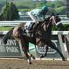 Merry Meadow wins the 2014 Vagrancy at Belmont Park.<br /> Coglianese Photos