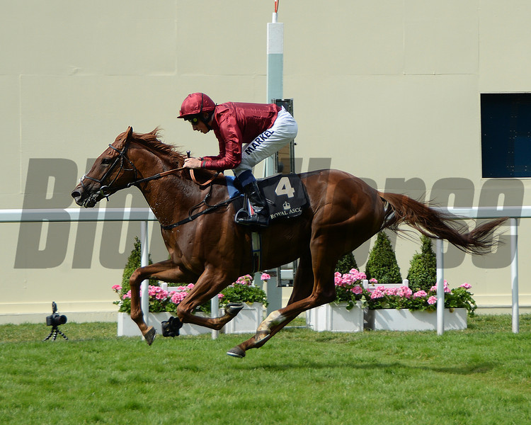 Eagle Top, WIlliam Buick up wins the King Edward VII Stakes, Royal Ascot, Ascot Race Course, England, 6/20/14 photo by Mathea Kelley