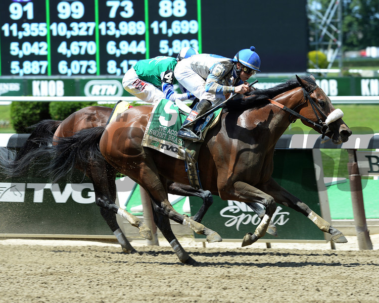 Sweet Reason wins the 2014 TVG Acorn Stakes.<br /> Coglianese Photos/Lauren King