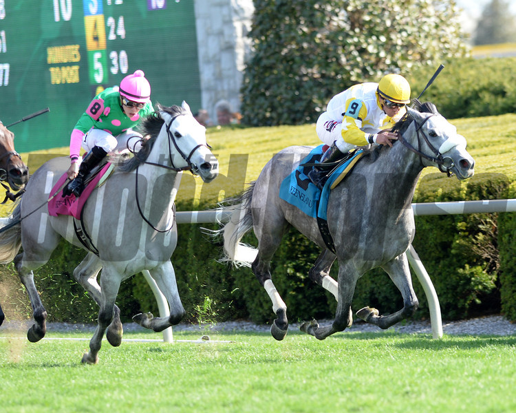 Keeneland Spring 2014; Lexington; KY; photo by Mathea Kelley, Hard Not to Like, Javiar Castellano up, wins the Jenny Wiley, 4/12/14