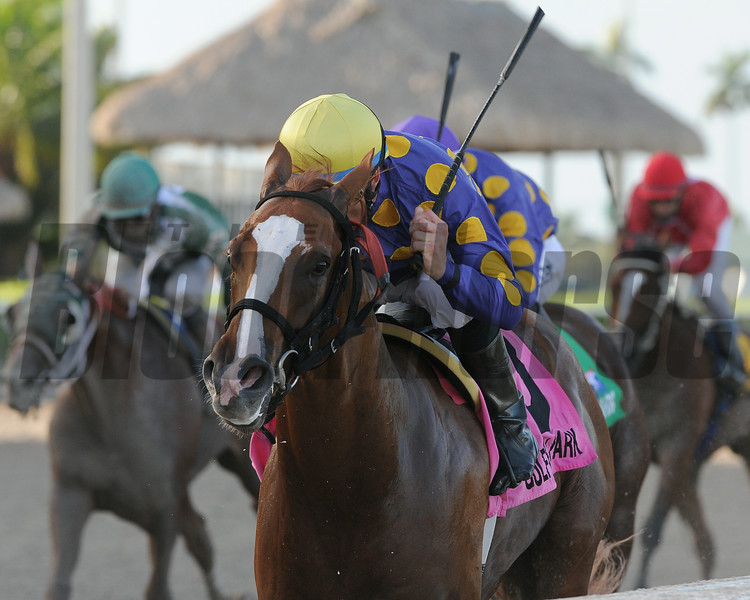 The 2014 Dr. Fager Stakes, being won by Sing Praises.<br /> Coglianese Photos/Kenny Martin