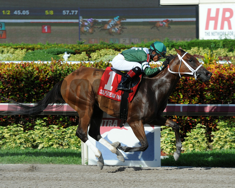 Coco's Wildcat wins the 2014 Cassidy Stakes.<br /> Coglianese Photos/Lauren King